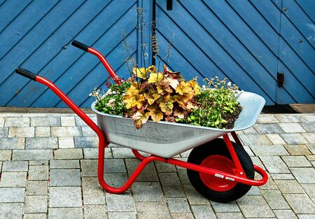 economic and practical garden decoration thought.