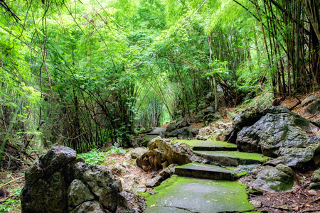 hellfire: Route green bright in tropical rain forest on rain season at hellfire pass, kanchanaburi, thailand Stock Photo