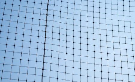 to sort: Net sort grid and blue sky