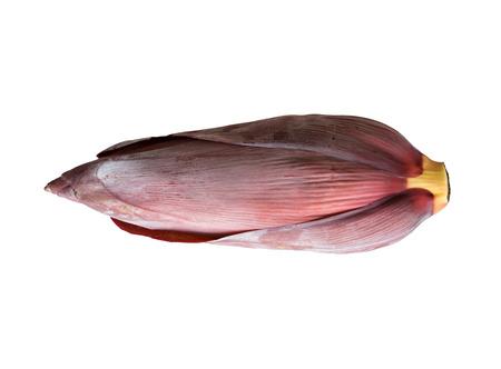 acuminate: Banana blossom,isolated on background