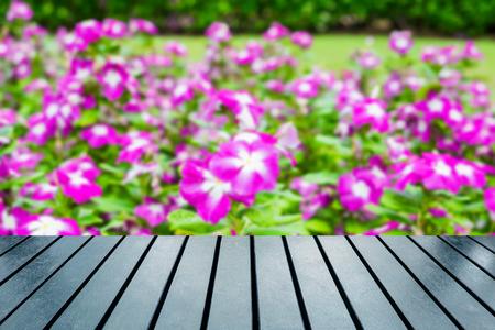Wood table top on blurred watercress,vinca flower bush pink white bloom Stock Photo