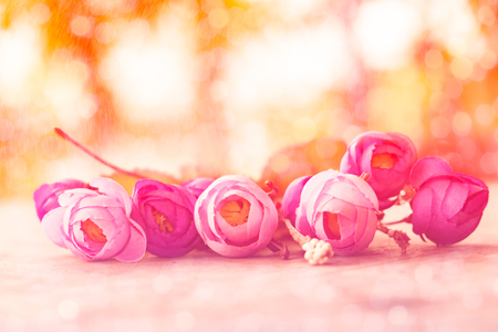 flower craft sort soft blurred colorful bright bokeh