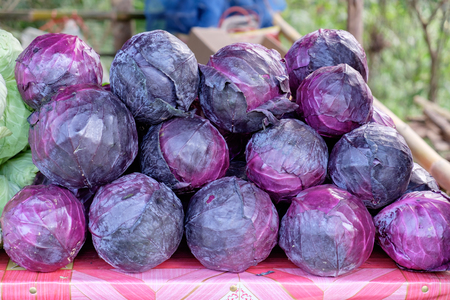 Purple cabbage stack on table for sale Banco de Imagens