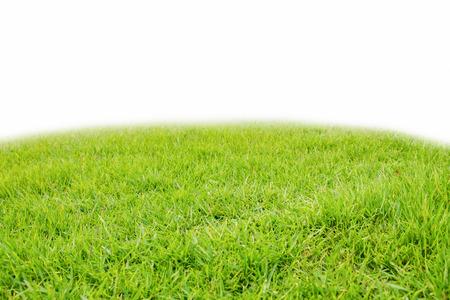 mound slope green grass,on white background