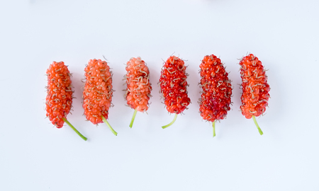 Mulberry ripe sorted colorful valuable on white background