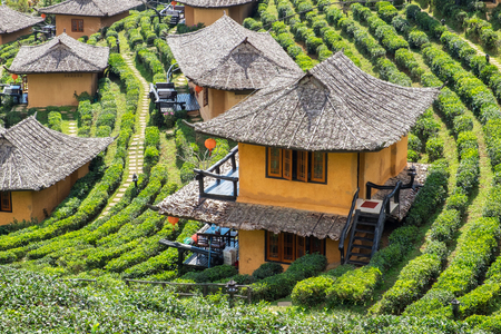 Viewpoint resort earth house in tea plantation at lee wine ban rak thai,mae hong son,thailand Foto de archivo