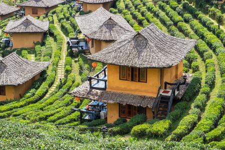 Viewpoint resort earth house in tea plantation at lee wine ban rak thai,mae hong son,thailand Stok Fotoğraf