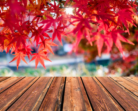 Wooden table top on blurred red Maple leaves in corridor garden Archivio Fotografico