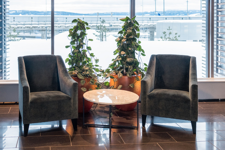 Two velvet chair with marble table and ivy plant decoration in living room on winter season
