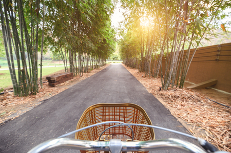 Biking retro bicycle in bamboo forest with sunlight shine