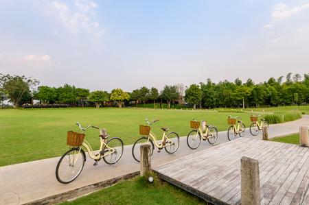 Retro row bikes parking on street in green park near lake Imagens