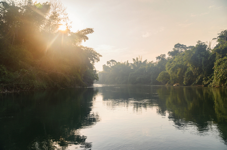 Sailing boat sightseeing of tropical jungle in river kwai at morning