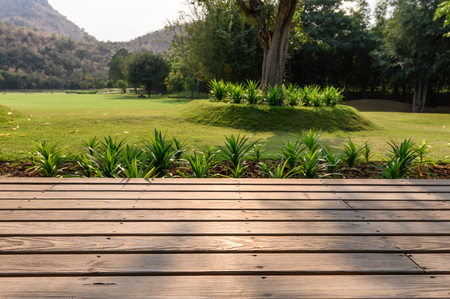 Wooden patio with garden on meadow at sunset
