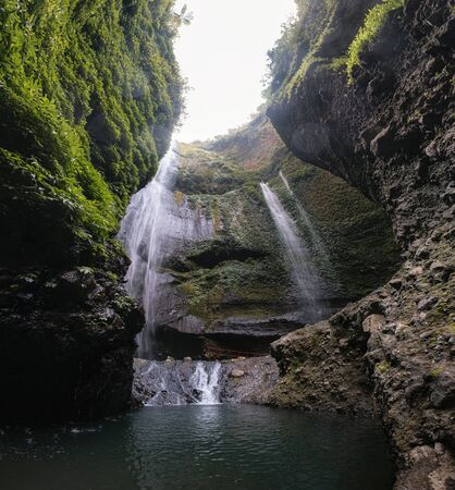 Madakaripura waterfall flowing on rock valley with plants in national park at East Java, Indonesia
