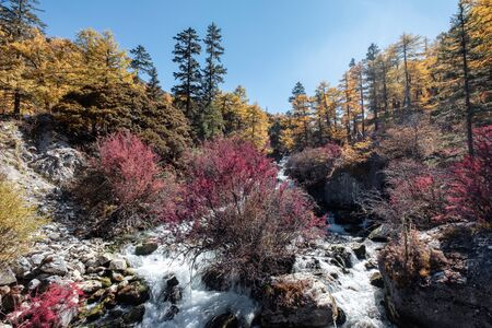 Colorful waterfall in autumn forest at Yading nature reserve, Daocheng, China