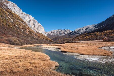 Sacred tibetan mountain with golden meadow and river in autumn at Yading nature reserve