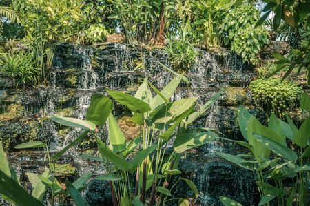 Scenery of waterfall flowing in green garden decoration Reklamní fotografie