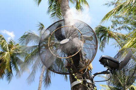 Misting fan spraying steam on coconut tree in restaurant