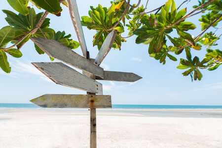 Arrows wooden signboard on the beach with green plant in summer sea