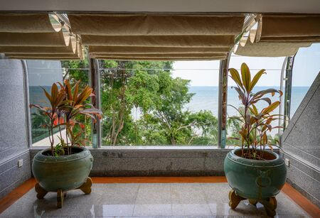 Interior tree in clay vases with golden curtains with tropical sea view Reklamní fotografie