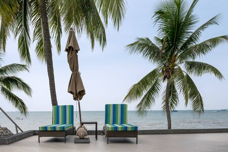 Rows of sun lounge with folded umbrella and coconut trees on seaside in tropical sea
