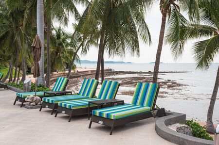 Rows of sun lounge with folded umbrella and coconut trees on seaside in tropical sea Reklamní fotografie - 134791388
