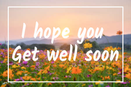 Encouragement Message, I hope you get will soon. Sunset on colorful cosmos flower garden
