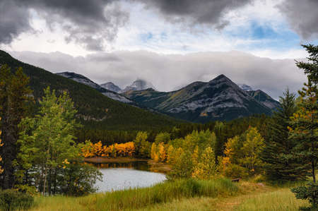 Rocky mountain in autumn forest on gloomy day at Kananaskis Country