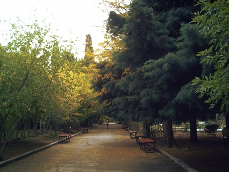 botanica: GOLD AUTUMN. Golden autumn in Baku Botanical Garden. The magnificent colors of autumn is not in any season of the year, a combination of green, red and yellow colors create a sense of fairy tales.
