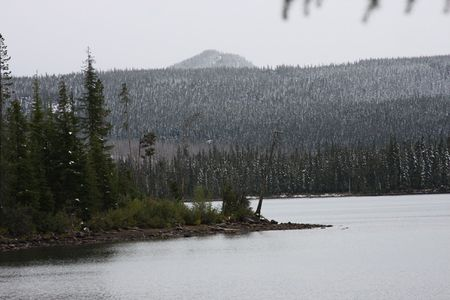 national forest: Lago de Olollie en el Monte Hood National Forest  Foto de archivo