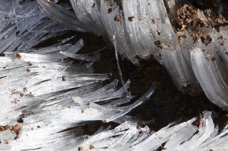 mount hood national forest: Ice Crystals in Mount Hood National Forest