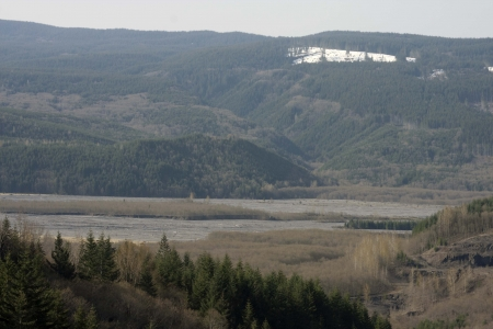 helens: Mount Saint Helens Mud Flats