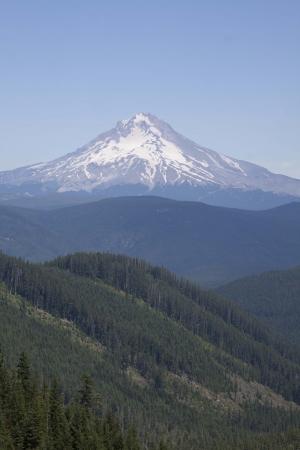 mount hood: Mount Hood - Photo taken on Forest Service road 58 to High Rock, Mount Hood National Forest, Oregon.