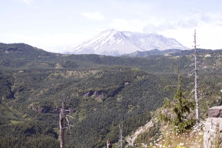 Mount Saint Helens - Photo taken in Mount Saint Helens National Volcanic Monument, Washington  photo