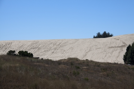 Sand Dunes  at Oregon Dunes National Recreation Area on Highway 101.
