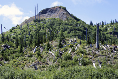 Photo taken at Mount Saint Helens National Volcanic Monument, Washington. photo