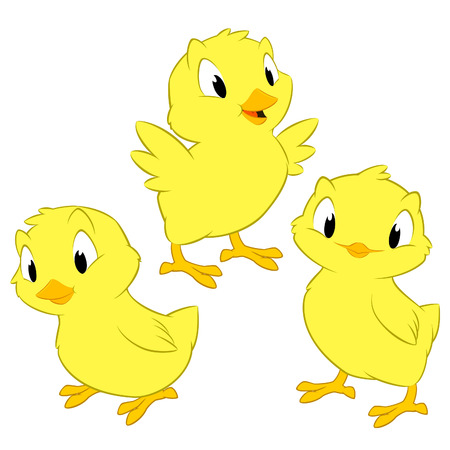 chick: Cartoon chickens. Isolated objects for design element