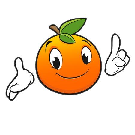 Vector illustration of cartoon orange  Vector