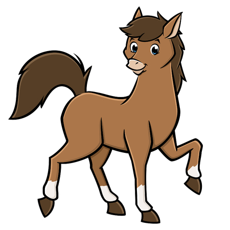 Vector illustration of a cute baby horse for design element