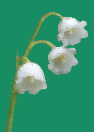 herbaceous: Geometic Lily of the valley flower isolated on green background Illustration