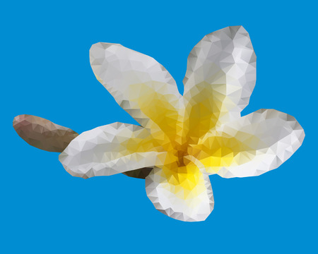 White geometric Plumeria flower isolated on blue background Vector