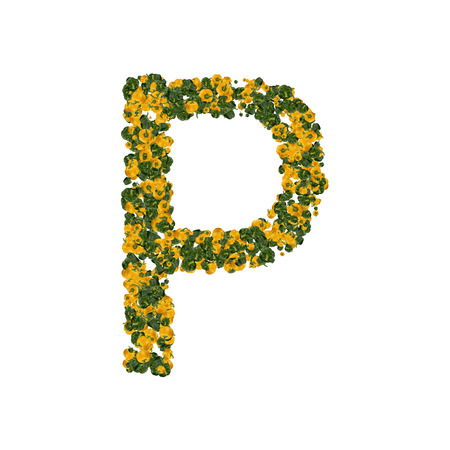 Letter P made from green and yellow bell peppers isolated on white background