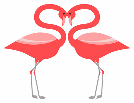 rosy: Couple pink flamingo stading together
