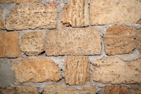 coquina: Muro de la coquina