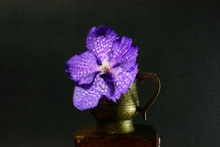 Orchid Vanda Flower in Indian handmade cup photo