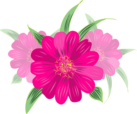 Magenta flower Stock Vector - 25123302
