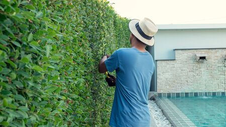 A man pruning branches in the garden of the house.