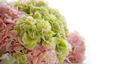 Beautiful bouquet flower on white background use for banner background Archivio Fotografico