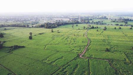 Aerial photographs of drones Rural green farmland