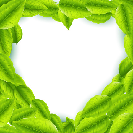Fresh green leaves with heart shaped frame